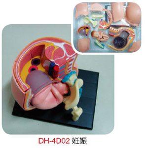 4D產品類